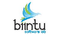 biintu software lab